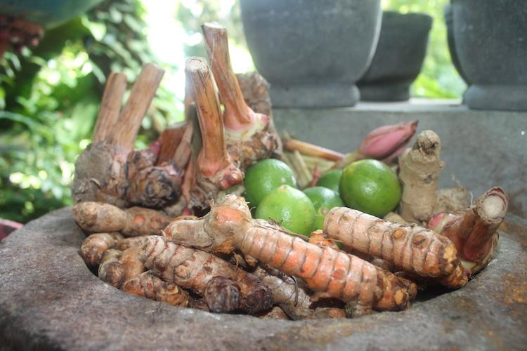 Gewürze im Tropical Spice Garden