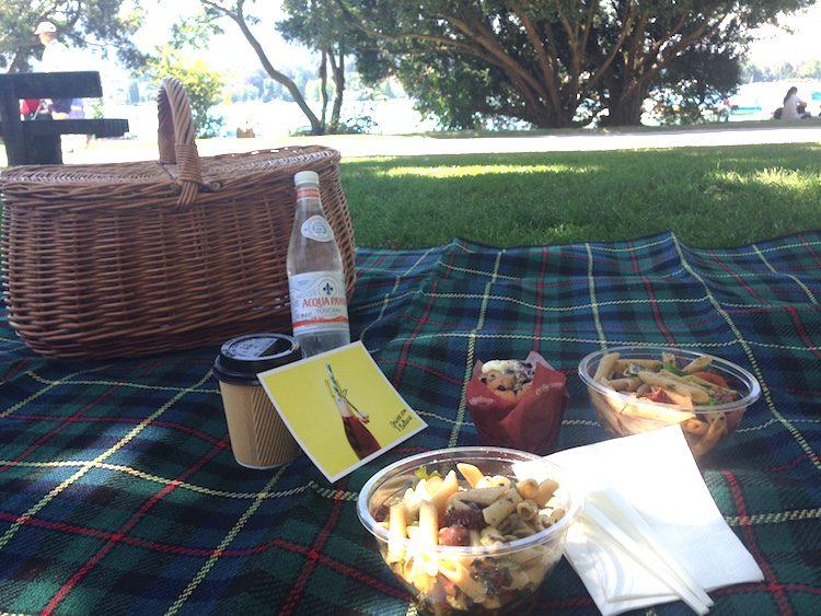 Picknick am Zürichsee