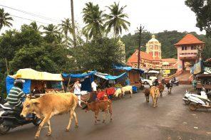 Goa – das andere Indien