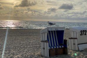 Einfach mal Sylt: 10 Tipps für einen schönen Tag auf der Insel