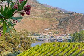 Flusskreuzfahrt am Douro – Erste Eindrücke